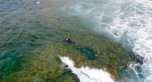 Escursioni in Barca in Sardegna | Sealives